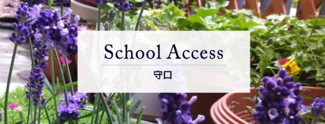 School Access